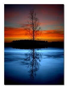 life-reflection
